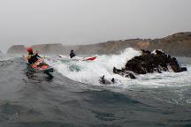 Liquid Fusion Kayaking, Fort Bragg, United States