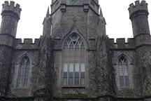 James Mitchell Geology Museum, Galway, Ireland