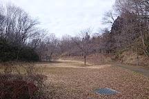 Mukaiyama Park, Oshu, Japan