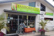 Tamborine Tea, Eagle Heights, Australia