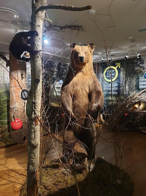 Estonian Museum of Natural History