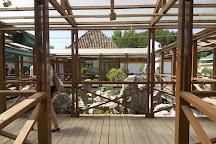 Museo del Bonsai, Marbella, Spain