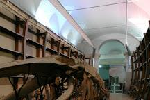Museo Regionale di Scienze Naturali, Turin, Italy