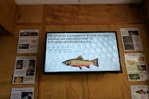 Cold Spring Harbor Fish Hatchery & Aquarium, Cold Spring Harbor, United States