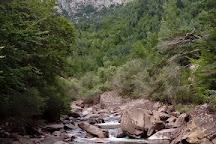 Selva de Oza, Hecho, Spain
