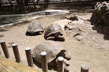 Zoológico de Quito, Guayllabamba, Ecuador