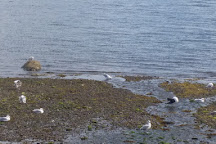 Valentia Island Sea Angling, Valentia Island, Ireland