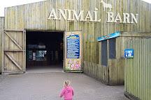 Crealy Adventure Park & Resort, Exeter, United Kingdom