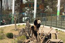 Dalian Forest Zoo, Dalian, China