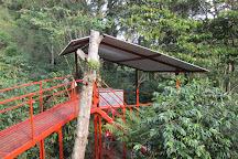 Rancho La Canada Organic Coffee Farm, Coatepec, Mexico