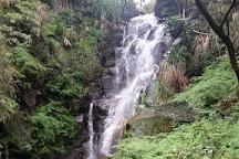 Yangmingshan National Park, Beitou, Taiwan