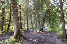 Sylvan Glen Conservation Area, Port Hope, Canada
