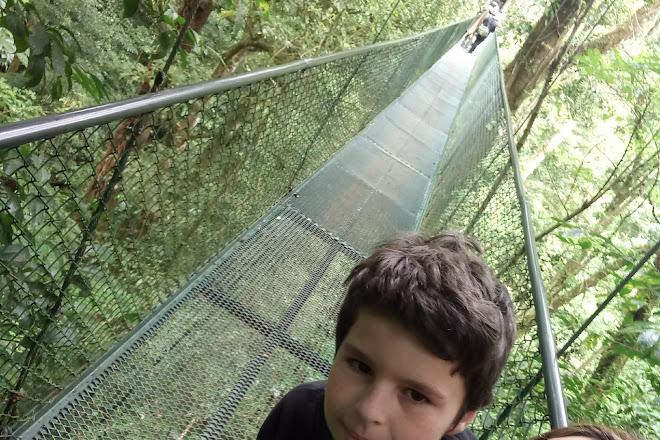 Jardin de Orquideas San Bosco, Monteverde, Costa Rica