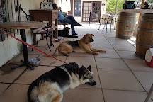 Shadow Mountain Vineyards & Winery, Warner Springs, United States