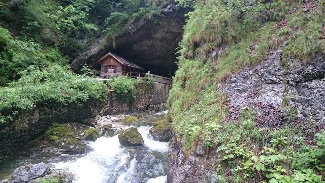 Koppenbrüller Höhle, Obertraun