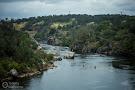 Lower American River