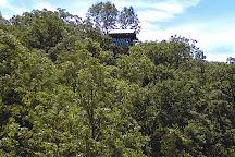 Branson Zipline at Wolfe Mountain, Walnut Shade, United States