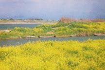 Chikugo River, Kurume, Japan