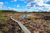 Torronsuo National Park, Tammela, Finland
