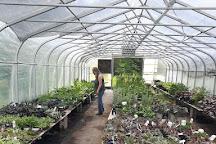 Marlin Orchards & Garden Centre, Cornwall, Canada