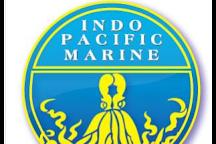 Indo Pacific Marine, Darwin, Australia