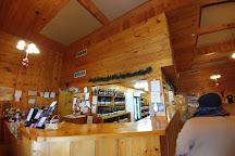 Caroline Cellars Winery, Virgil, Canada