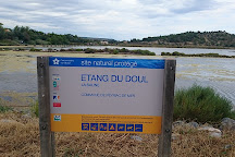 Etang Du Doul Et De La Saline, Peyriac-de-Mer, France