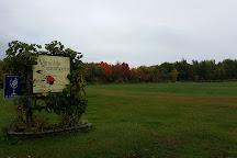 Vignoble du Marathonien, Havelock, Canada