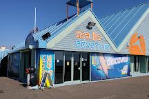 Sea Life Adventure, Southend-on-Sea, United Kingdom
