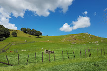 Bullswool Farm Park, Paeroa, New Zealand