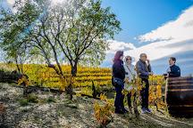 Catalan Wine Tours, Gratallops, Spain