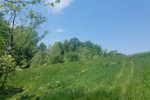 Great Seneca Stream Valley Park, Germantown, United States