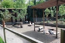 Bretten Tierpark, Bretten, Germany