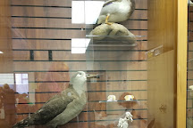 Humboldt State University Natural History Museum, Arcata, United States