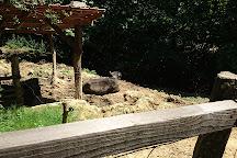 Parc Animalier Etxola, Sare, France