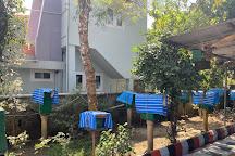 Philip's Natural Honey And Bee Farm, Thekkady, India