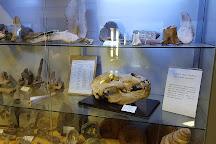 Museo Civico di Lentate sul Seveso, Lentate sul Seveso, Italy