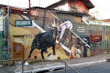 Centro Cultural Rio Verde, Sao Paulo, Brazil