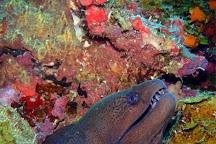 Twin Island Dive, Nusa Lembongan, Indonesia