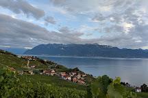 Alain Chollet Winery, Lutry, Switzerland