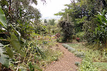 The Ark Herb Farm, Santa Barbara, Costa Rica