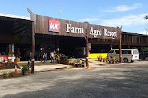 UK Farm, Kluang, Malaysia