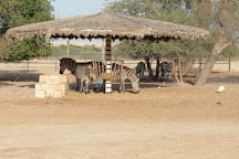 Al Areen Wildlife Park & Reserve, Zallaq, Bahrain