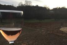 Odom Springs Vineyards, Blairsville, United States