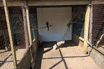 Zoo de St-Edouard, Saint-Edouard-de-Maskinonge, Canada