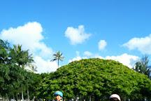 Segway of Hawaii, Honolulu, United States