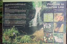 Hareshaw Linn, Bellingham, United Kingdom