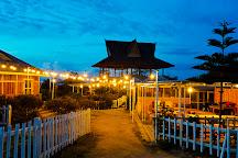 Kebun Madu Efi, Kabanjahe, Indonesia