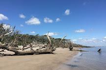 Black Rock Beach, Black Rock, Australia
