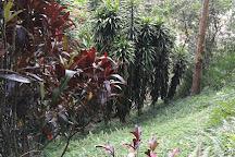 Mina El Sexmo, Zaruma, Ecuador